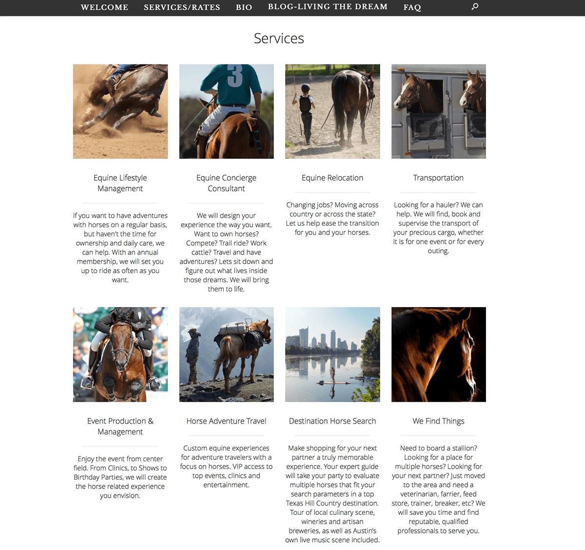 Ambience Equine, BigStar Creative