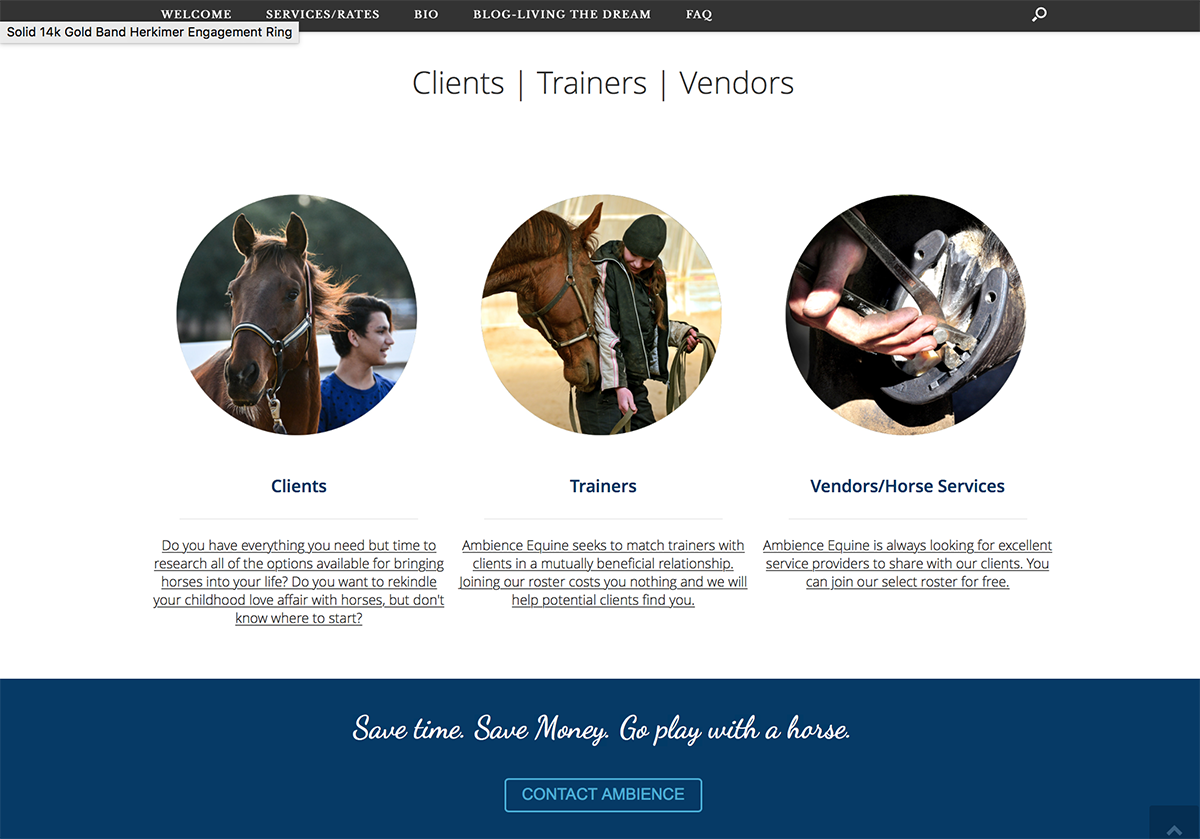 Ambience Equine, BigStar Creative, services